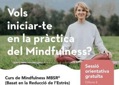 Curs de Mindfulness MBSR®